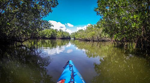 Indian River Paddling-58