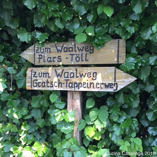 2016 05 Algunder Waalweg 6