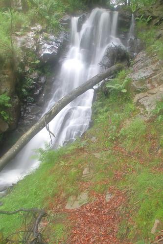 Parque natural de #Gorbeia #Orozko #DePaseoConLarri #Flickr -118