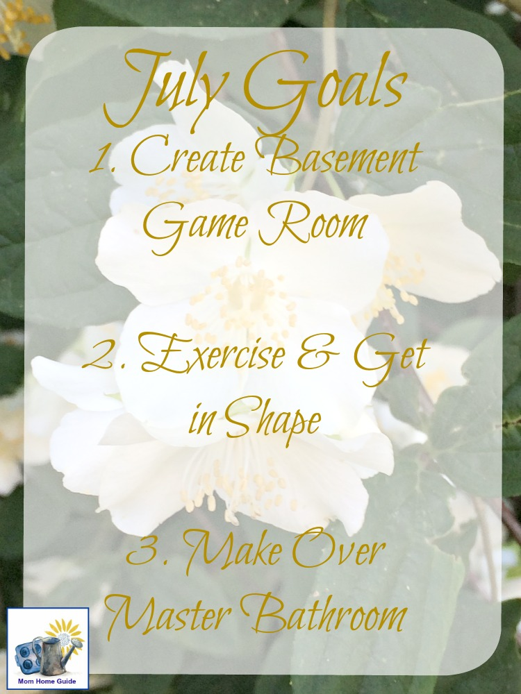 goals-july-mom-home-guide