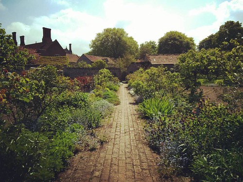 Today we ventured out to Wiveton Hall and fell in love with the kitchen garden. I would happily live in a shed in the corner of this garden, it's stunning.