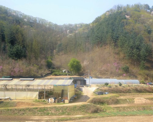 c16-Chuncheon-Gangneung-route (5)