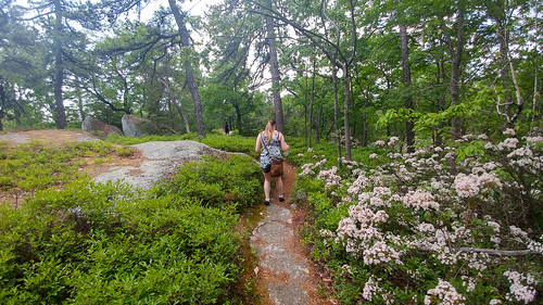 Gisela on the TRail