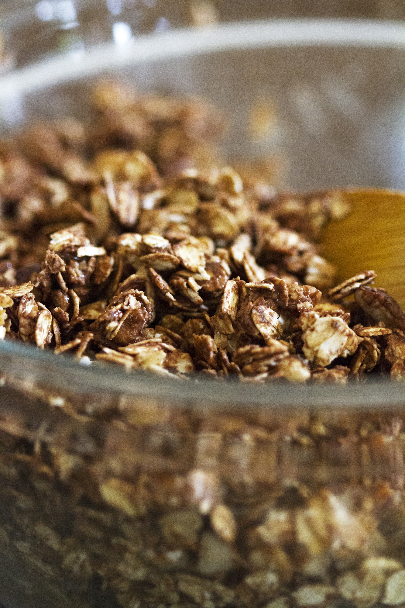 5 Ingredient Nutella Granola | girlversusdough.com @girlversusdough