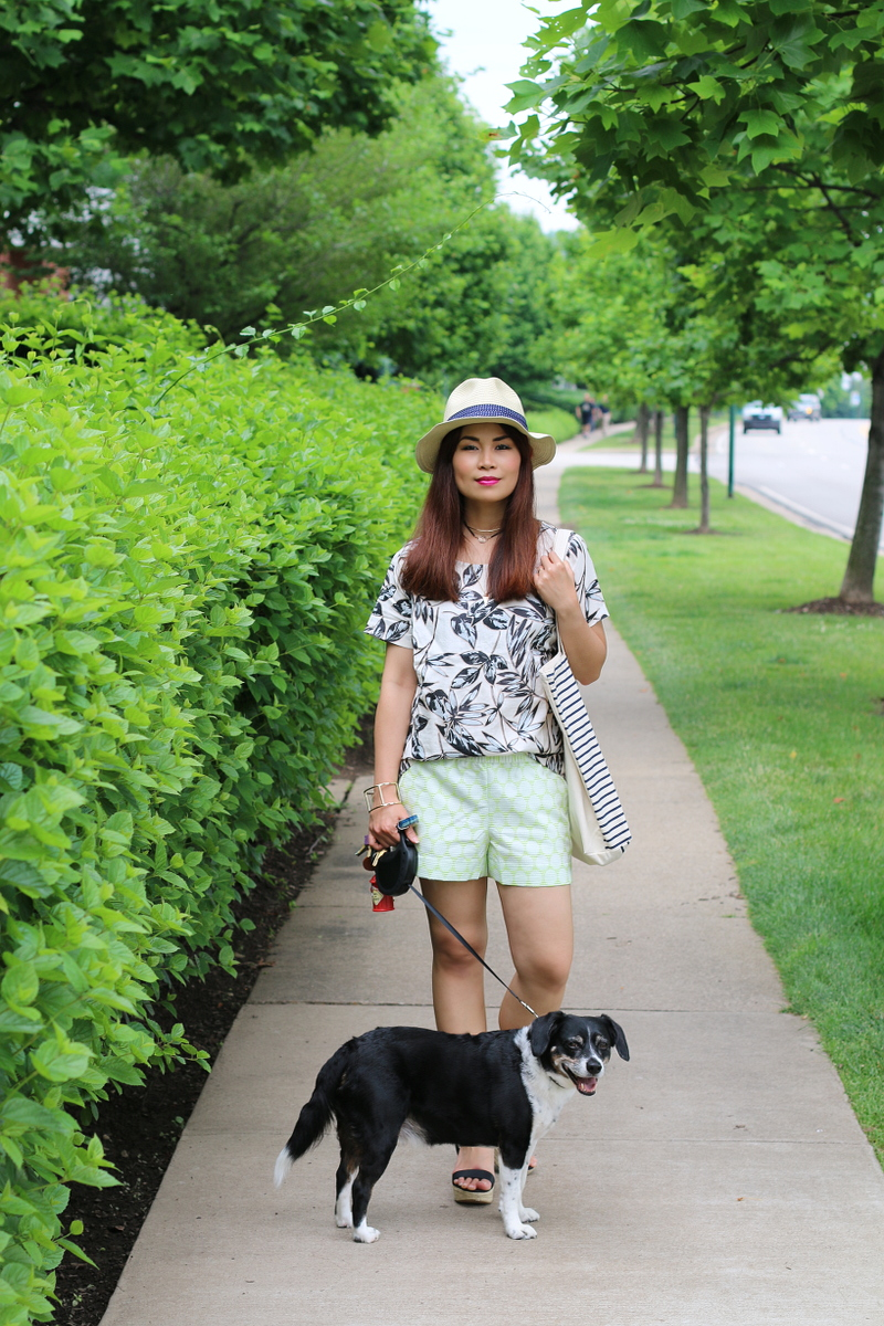 J-Crew-top-shorts-Premium-outlets-look-dog-8