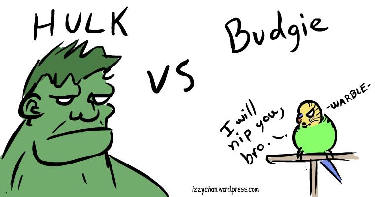 budgie will nip hulk