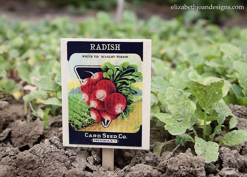 Vintage Seed Packet Plant Marker - a 5 minute craft for your garden