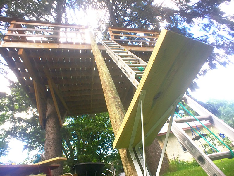 How to build a custom treehouse spiral staircase without First step to building a house
