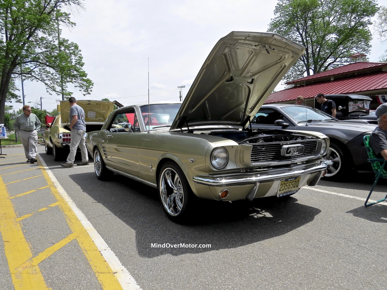 1964 1:2 Ford Mustang