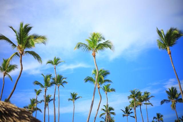 Punta Cana, DR Tanvii.com 8