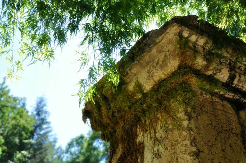 Pillar @ Mt. Hope Chronicles