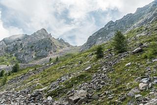 Aufstieg zur Göflaner Scharte, 2400 m