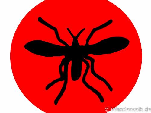 mücken (67 von 1)