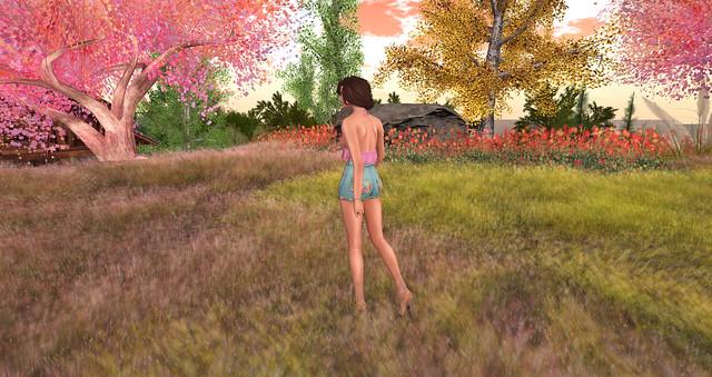 Summer Walk