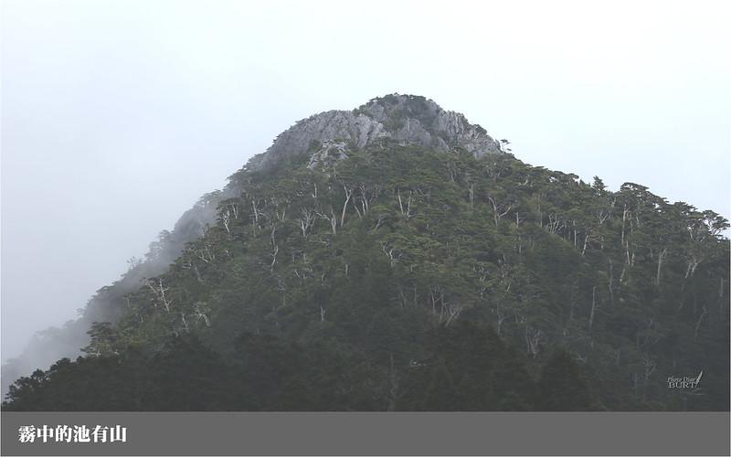 霧中的池有山