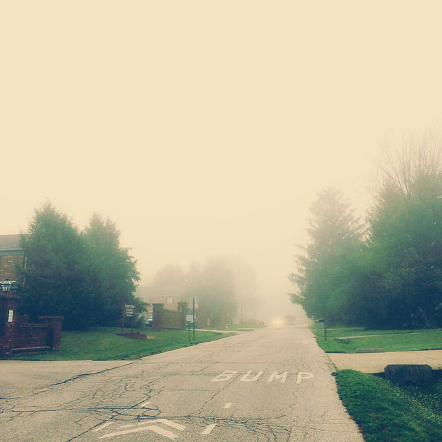 Foggy Morning #fog #morning