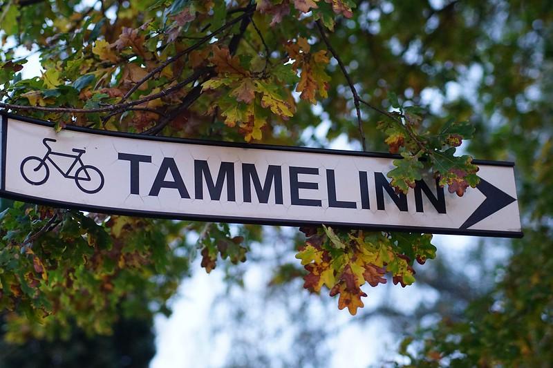 Tammelinna Päevad 2016