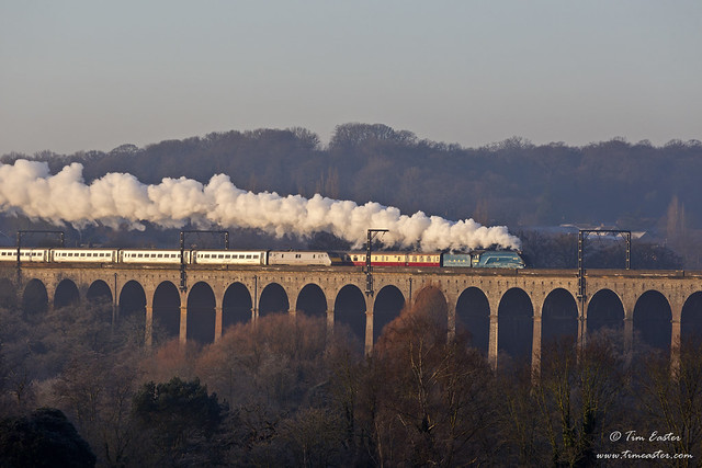 4464 91120 Digswell Viaduct 30-12-14 (V18133)