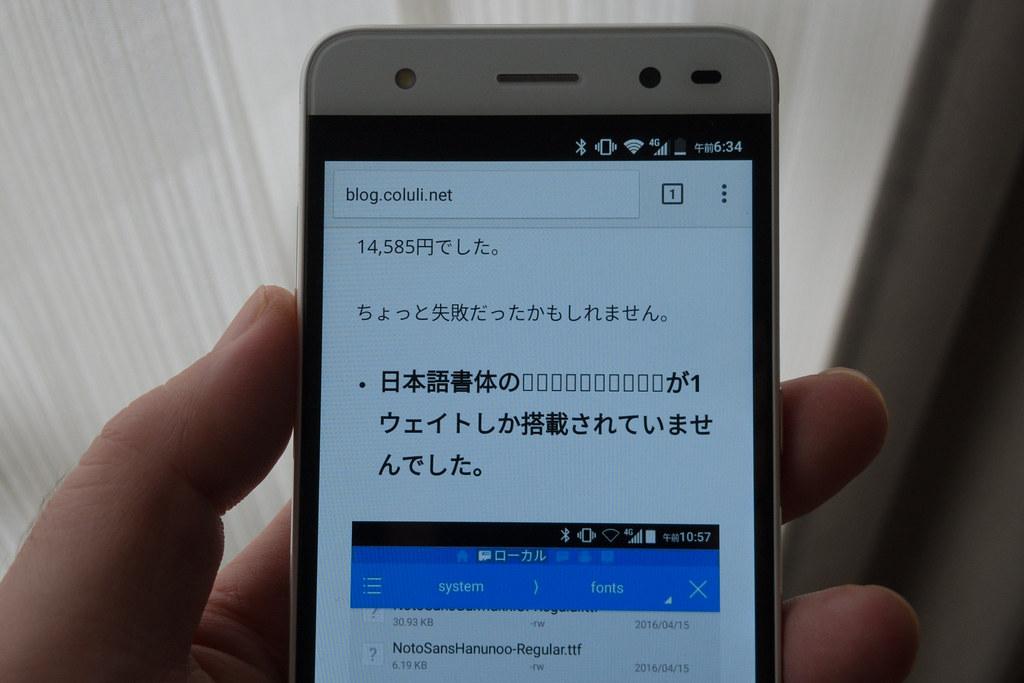 DSCN1095