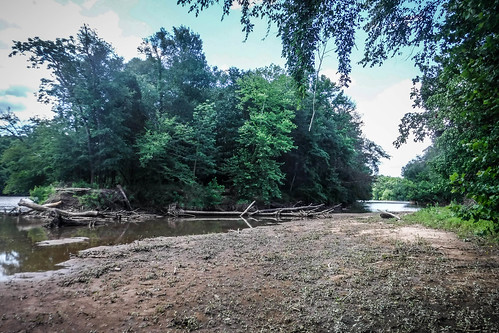 Goat Island in the Broad River-81