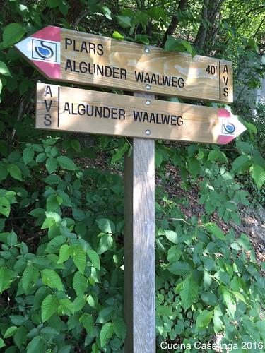 2016 05 Algunder Waalweg 3