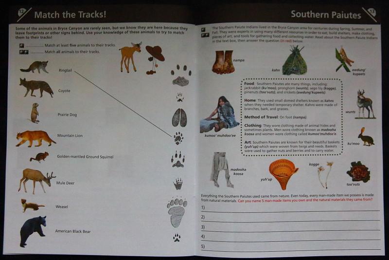IMG_8043 Junior Ranger Activity Book