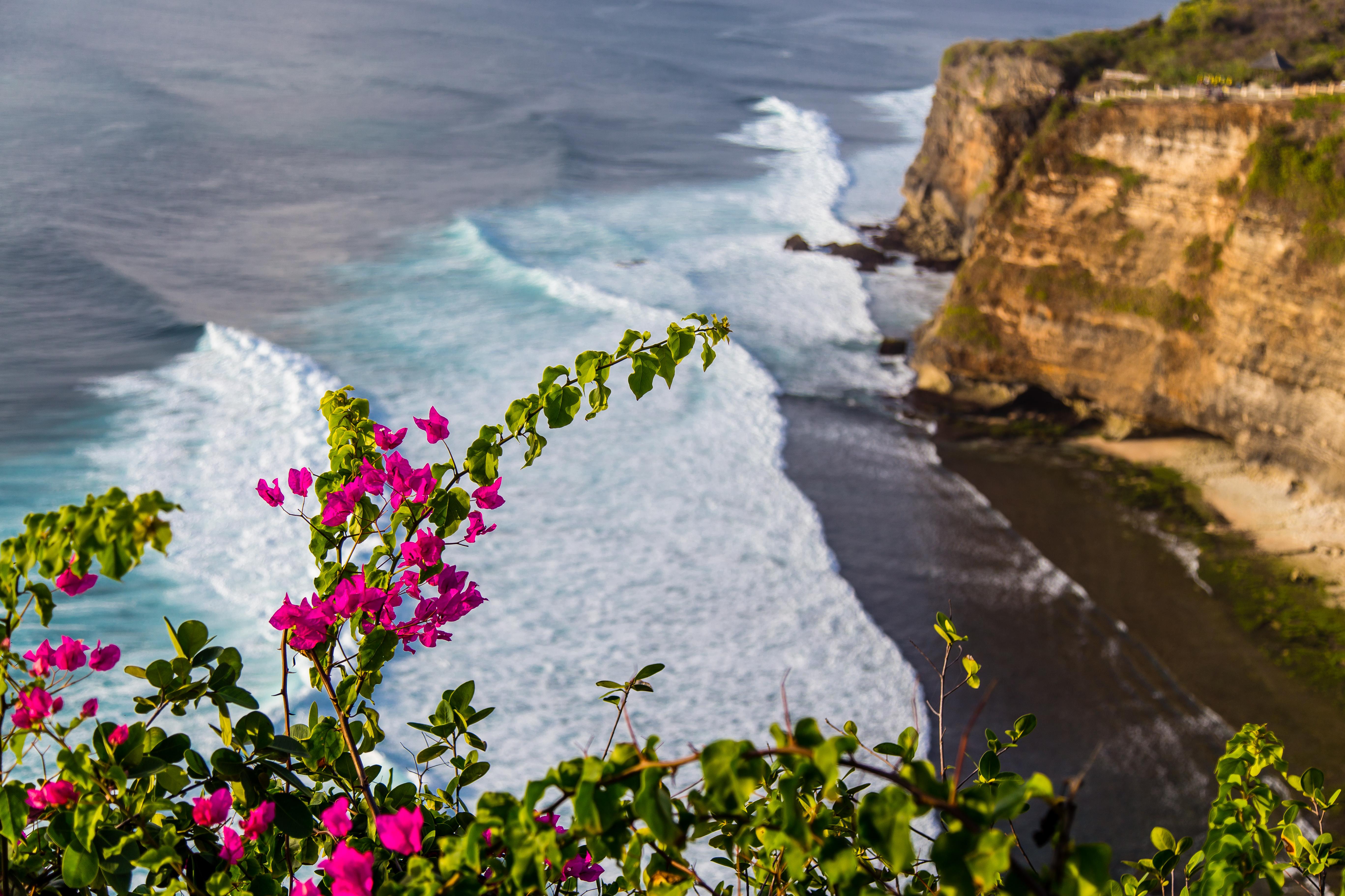 Bali-3776