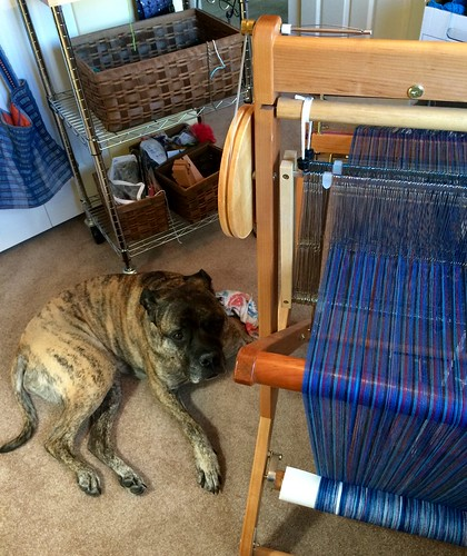 Kona supervising the beaming of the warp.
