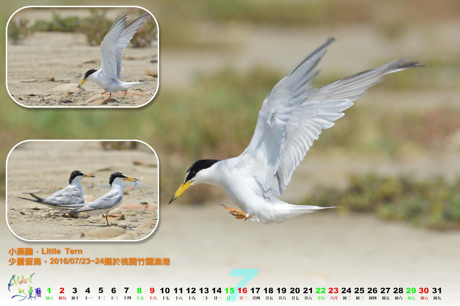 Calendar2017_0107