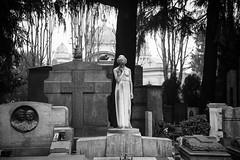 Миланское кладбище. Solitudine