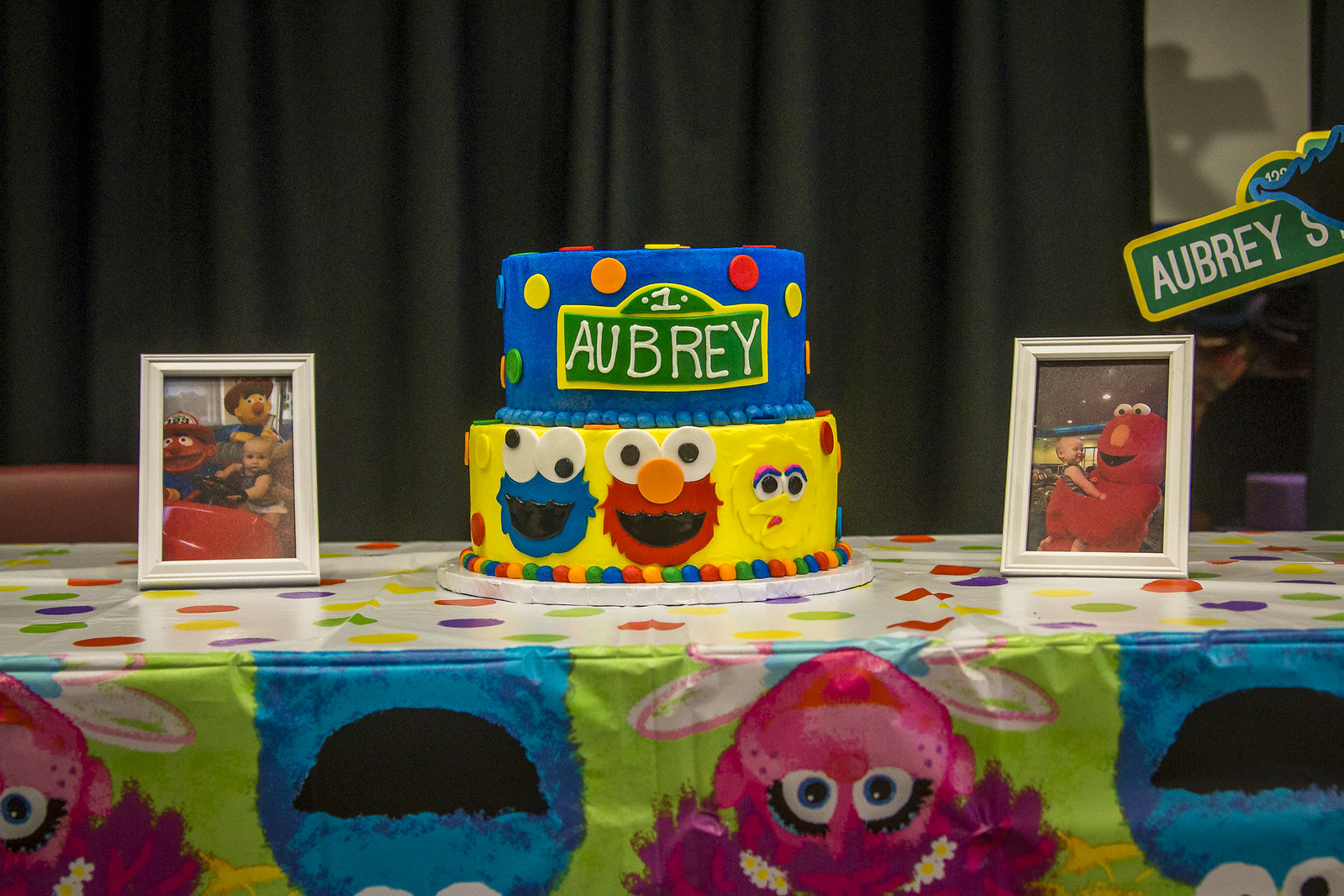 Aubrey's First Birthday