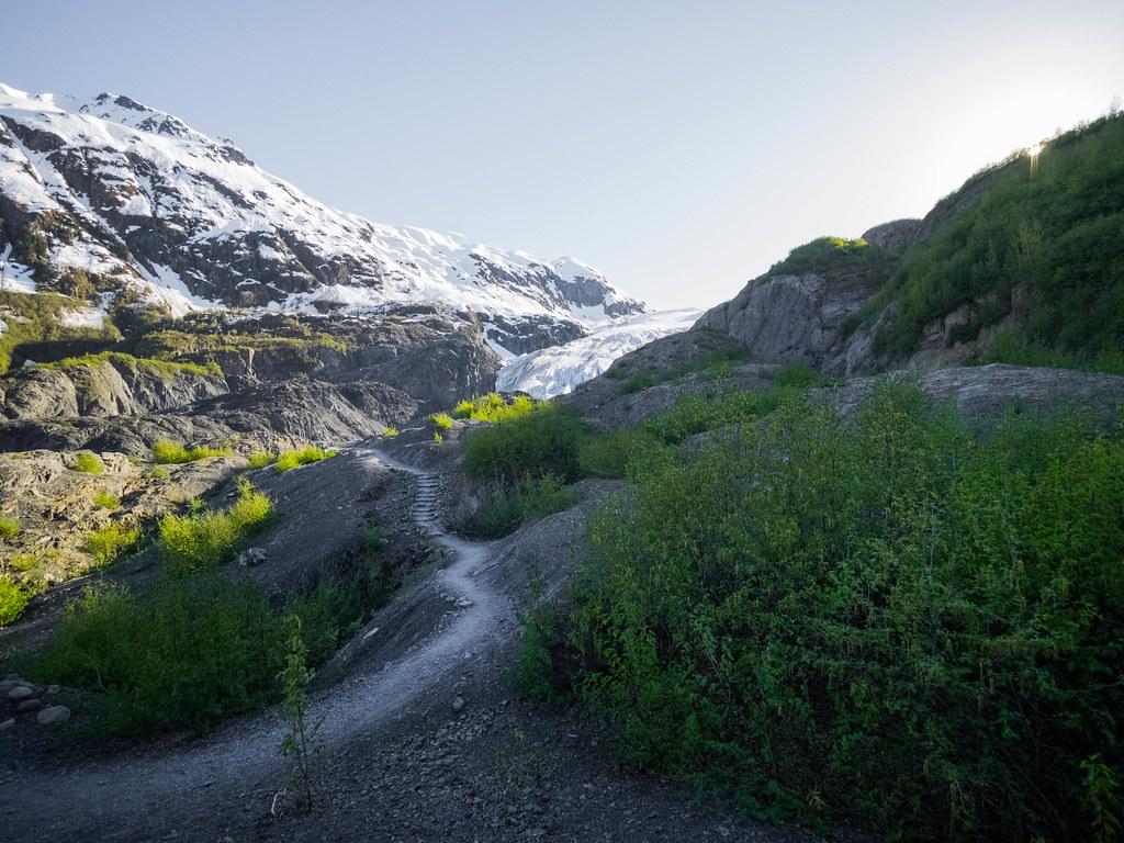 Exit Glacier-14