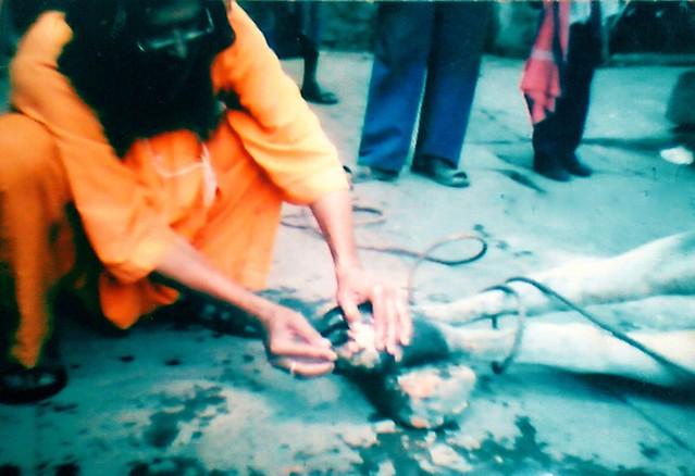 Ramji Garg (7)
