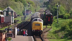D9016 (55 016) 'Gordon Highlander' at Quorn & Woodhouse, 3rd May 2014