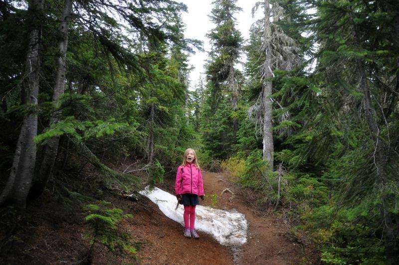 Triangulation Peak Hike 5 @ Mt. Hope Chronicles