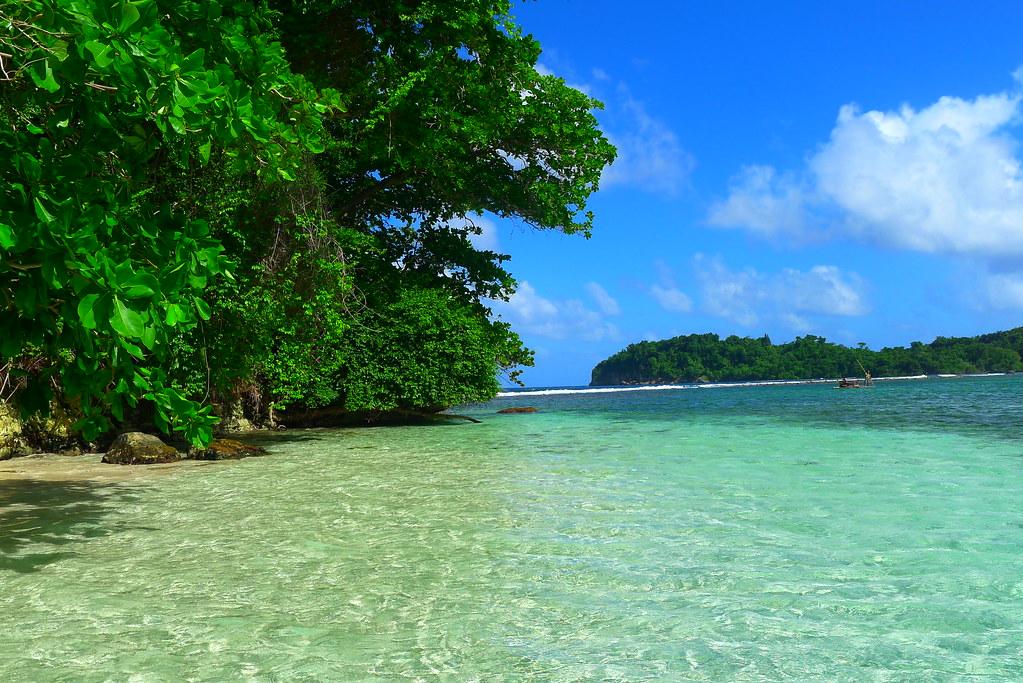 Jamaica '14 Monkey Island
