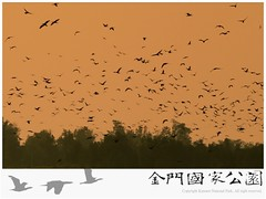 2014金門采風-10