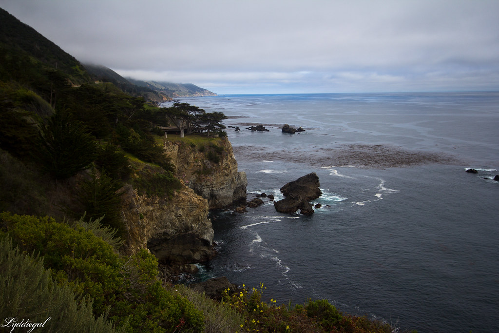 pacific coast highway.jpg