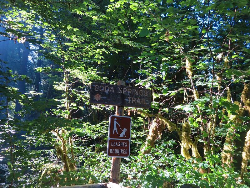 Soda Springs Trail - Cascadia State Park