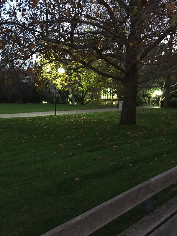 South Lawn in the evening, looking towards the Baillieu Library, University of Melbourne