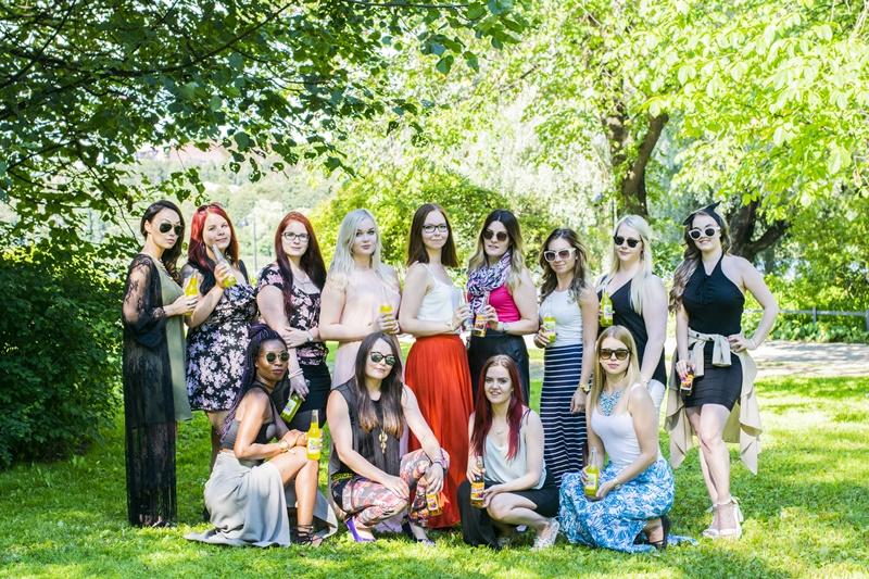 blogimiitti piknik 2016