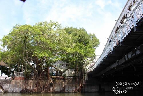 160906d Singapore River Cruise _129