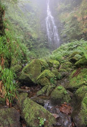 Parque Natural de #Gorbeia #Orozko #DePaseoConLarri #Flickr - -602