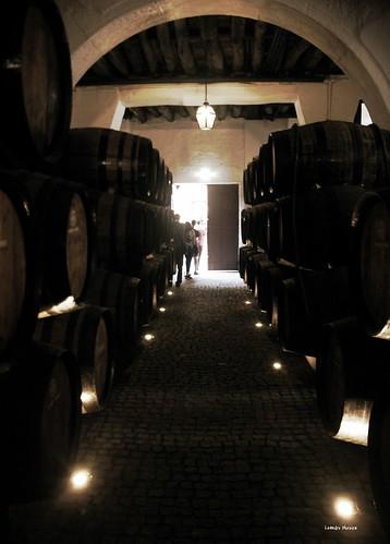 Barris pequenos de vinho do porto na Ramos Pinto, envelhecendo futuros Tawnys