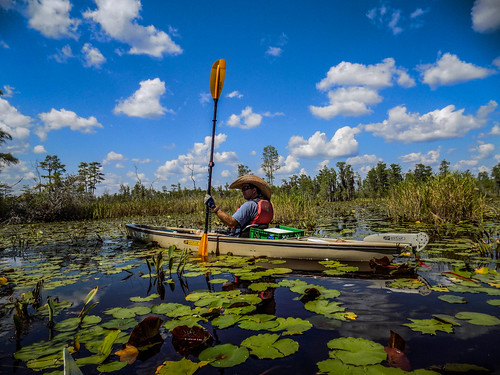 Lowcountry Unfiltered at Okefenokee-275