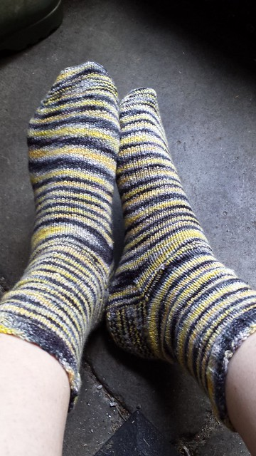 Plain Striped Socks
