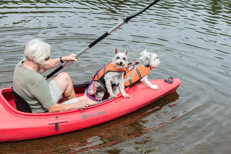 Kayak Schnauzers 1