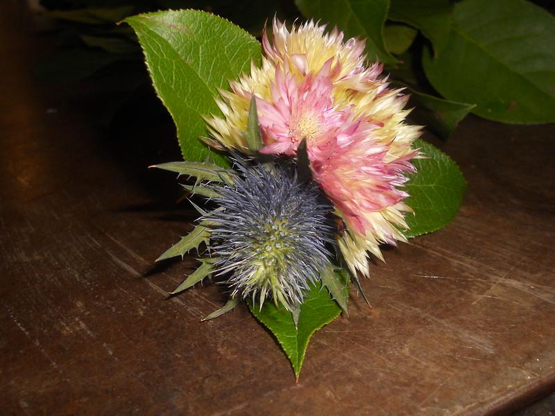 [Arrangements floraux] Nouveautés p.2 28032074116_5b14b2bfa3_c