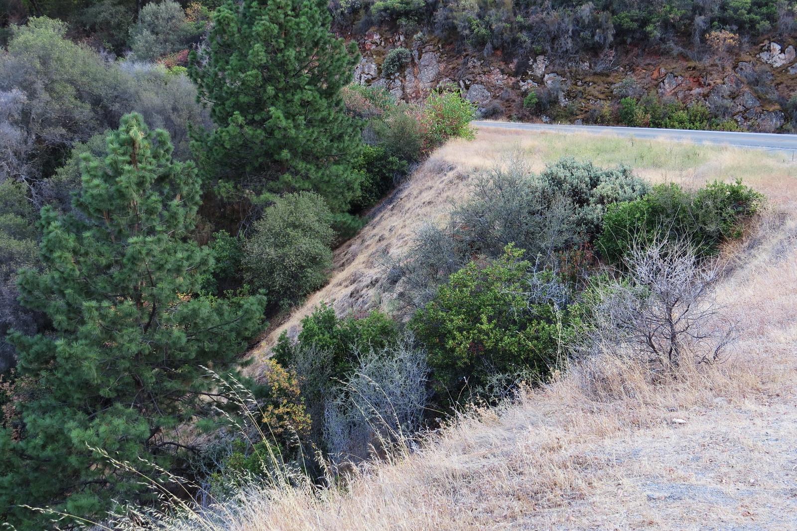 Road 140 CA, Yosemite