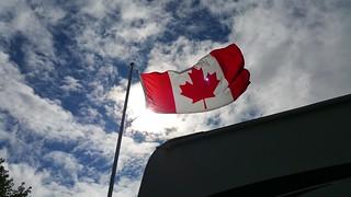 Flag in sun